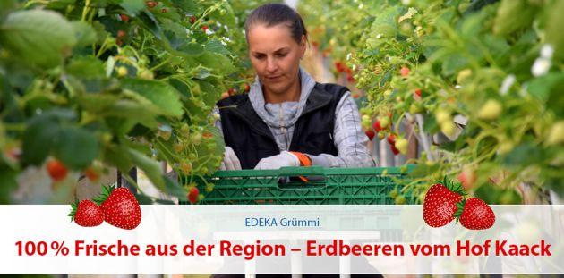 100% Frische aus der Region – Erdbeeren vom Hof Kaack